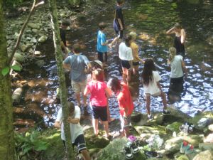 Some of the campers chose to cool off in Northgate Falls