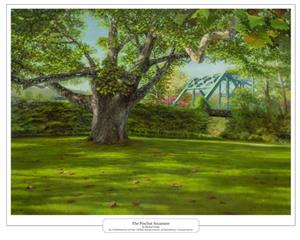 Simsbury 350 Pinchot Sycamore Tree Painting Poster